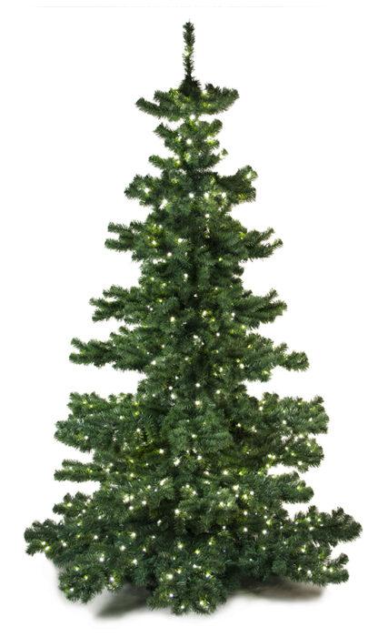 Basic Tree Plain 240cm-0